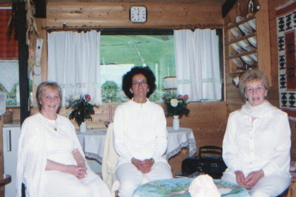 Reynishverfi 1995